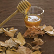 Honey and fall - Stock Photo