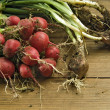 Radishes and scallion — Stock Photo