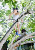 Young girl and boy on tree — Stock Photo