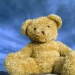Teddy bear — Foto de Stock