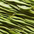 Romano Beans close-up - Stock Photo