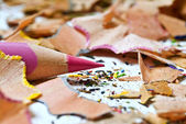 Pink pencil and shavings — Stock Photo