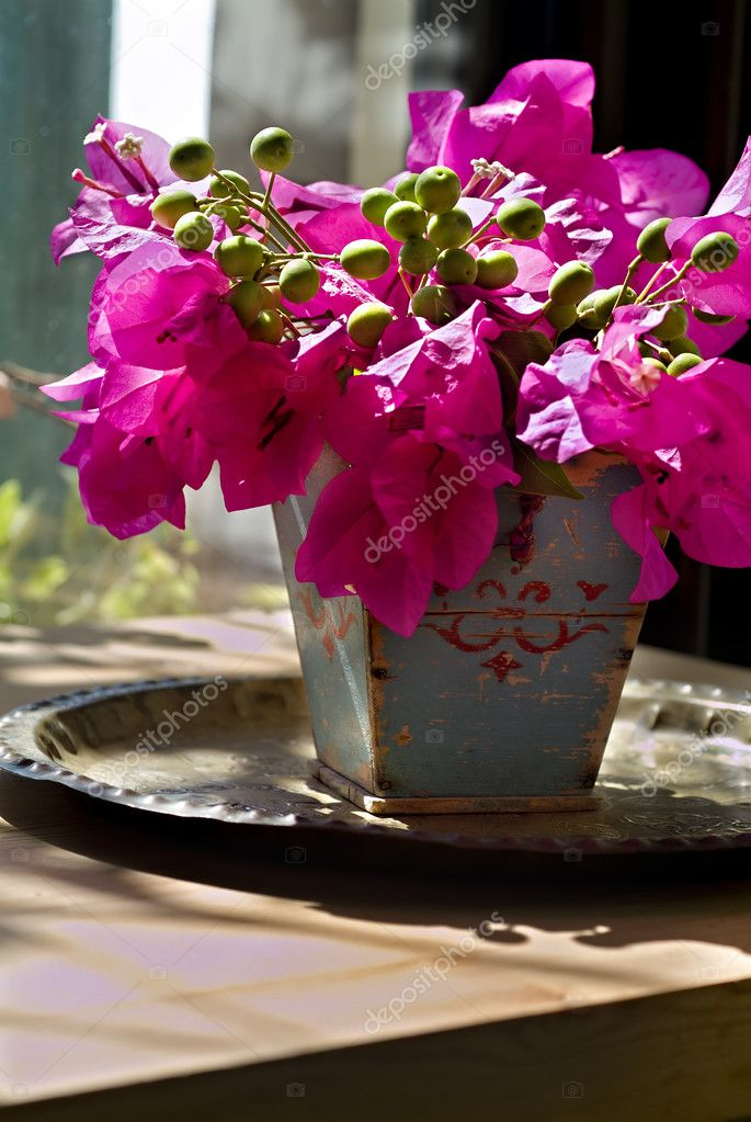 Bouquet of bougainvillea in an old wooden vase — Stock Photo #1342603