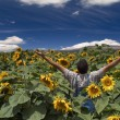 Farmer in sunflower field arms spread out - Stock Photo