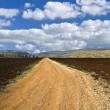 Stock Photo: Winding white dirt road