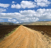 Winding white dirt road — Stock Photo