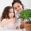 Teacher child plant - Stockfoto