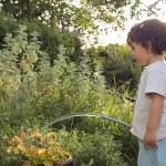 Child watering garden — Stock Photo