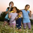 Stock Photo: Kids having pop ice