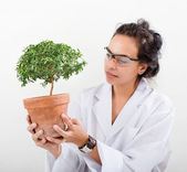 Scientist lab plant — Stock Photo