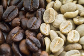 Black and green coffee beans — Stock Photo