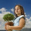 Girl holding small tree — Stock Photo