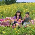 Boy girl picnic — Stock Photo