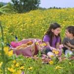 picnic chico chica — Foto de Stock