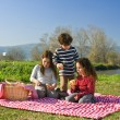 Picnic — Stock Photo #2216271