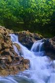 Parod River Israel — Stock Photo