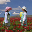 Two girls in a red field — Stock Photo