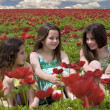 Three girls in a red field — Stock Photo