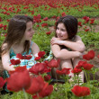 Stock Photo: Two girls in a red field
