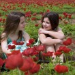 Two girls in a red field - Stock Photo