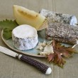 Goat cheeses — Stockfoto