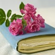 Small roses on a diary — Stockfoto
