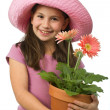 Young girl pink daisies - Stock Photo