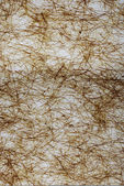 Fibres texture background — Stock Photo