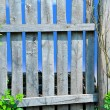 Stock Photo: Fence and Sky
