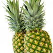 Two Pineapple — Stock Photo
