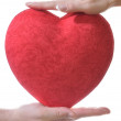 Stock Photo: Red heart in male and female hands