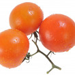 Three Five Red Tomatoes — Stock Photo
