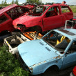 Stock Photo: Car cementary with many broken cars