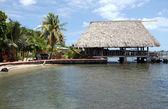 Wooden pier in carribean sea,Belize — Stock Photo