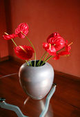 Red flowers on glass table — Stock Photo