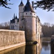 Stock Photo: Castle Chenonceau 2