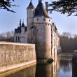 Castle Chenonceau 2 — Stock Photo #1359245