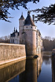 Castle Chenonceau 2 — Stock Photo
