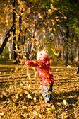 孩子们把扔秋叶 3 — 图库照片