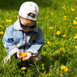 The boy-dandelion 2 — Stock Photo
