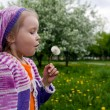 Stock Photo: The girl and a dandelion