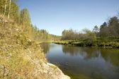 Parku jeleni creek — Zdjęcie stockowe