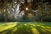 Parco del castello di chenonceau — Foto Stock