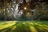 Park av slott chenonceau — Stockfoto