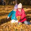 Children throw autumn leaves 4 — Stock Photo