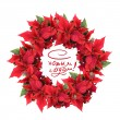 Christmas wreath from poinsettia — Stock Photo #1359527