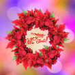 Christmas wreath from poinsettia - Stock Photo