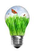 Light bulb with summer meadow — Stock Photo