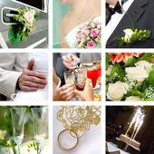 Barevné svatební foto sada — Stock fotografie