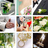 Color wedding photo set — Stockfoto